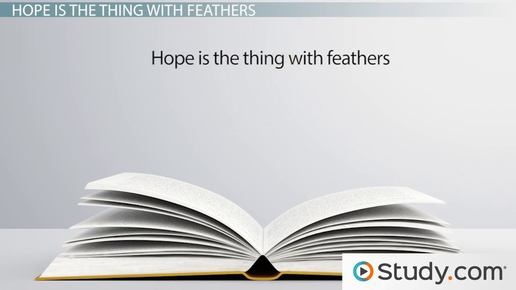 emily dickinson s hope is the thing feathers summary emily dickinson s hope is the thing feathers summary analysis theme video lesson transcript com