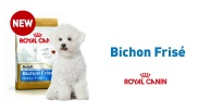 BICHON FRISE BENEFITS (FR)