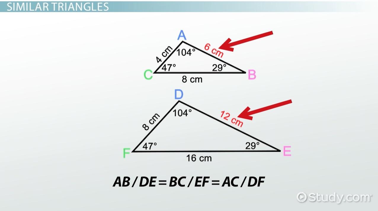 worksheet Postulate Math aa similarity postulate theorem video lesson transcript study com