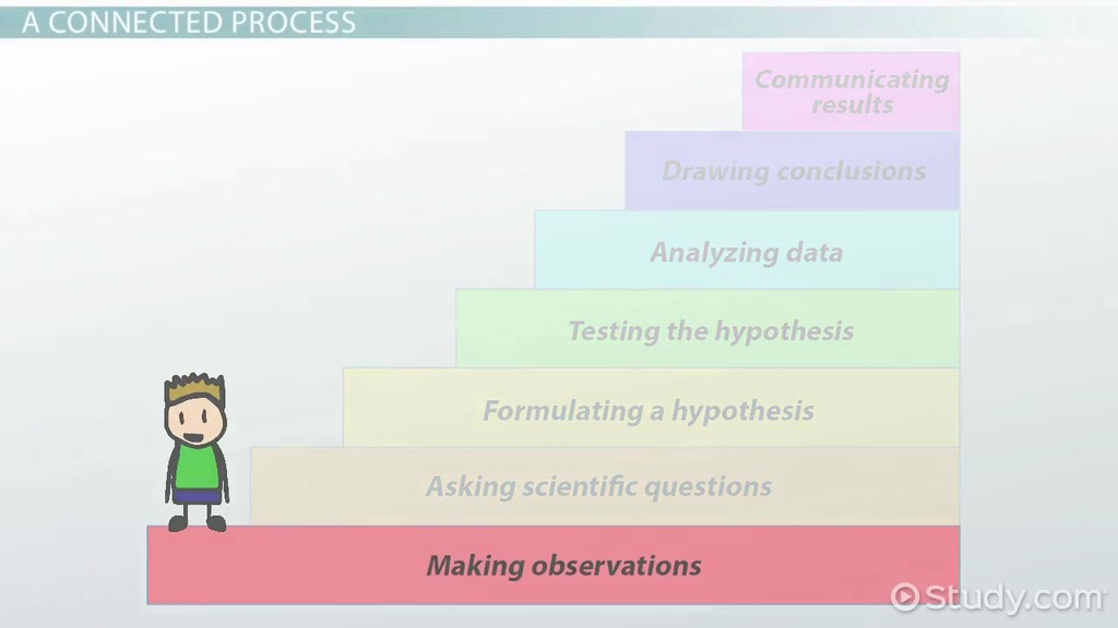 Connecting The Steps Of The Scientific Method - Video & Lesson