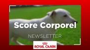 Score corporel chien
