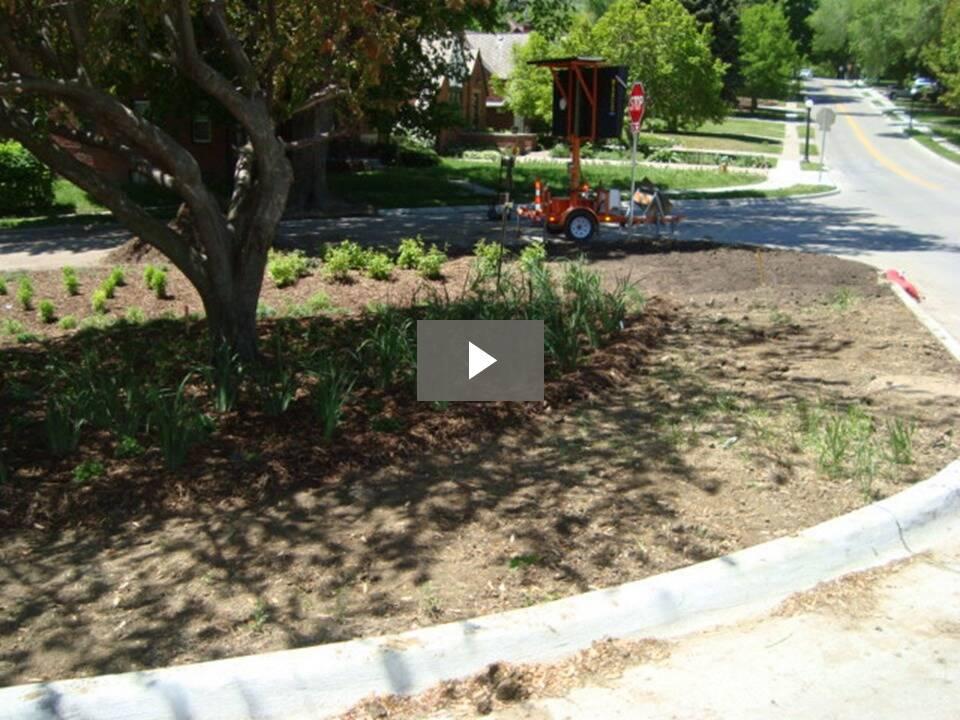 Bioretention Basin Garden