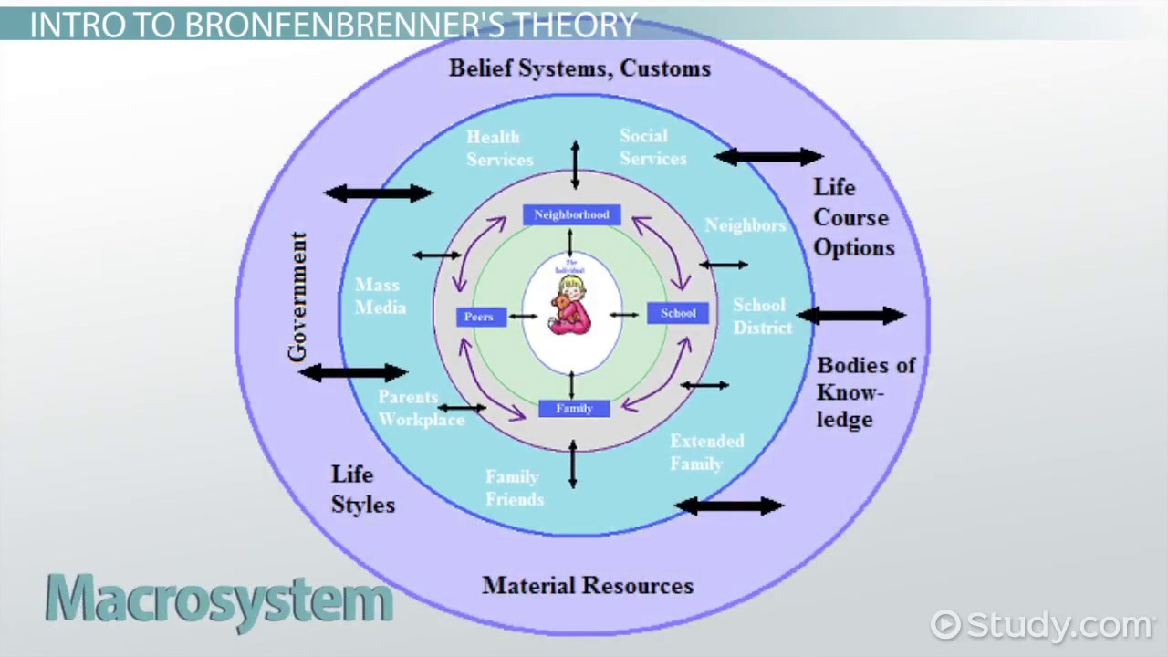 analyze bronfenbrenners ecological theory of development The author proceeds to explain every key system that is included in the  bronfenbrenner's ecological theory journals are being analyzed to.