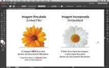 A diferença entre Imagem Vinculada e Imagem Incorporada no Illustrator