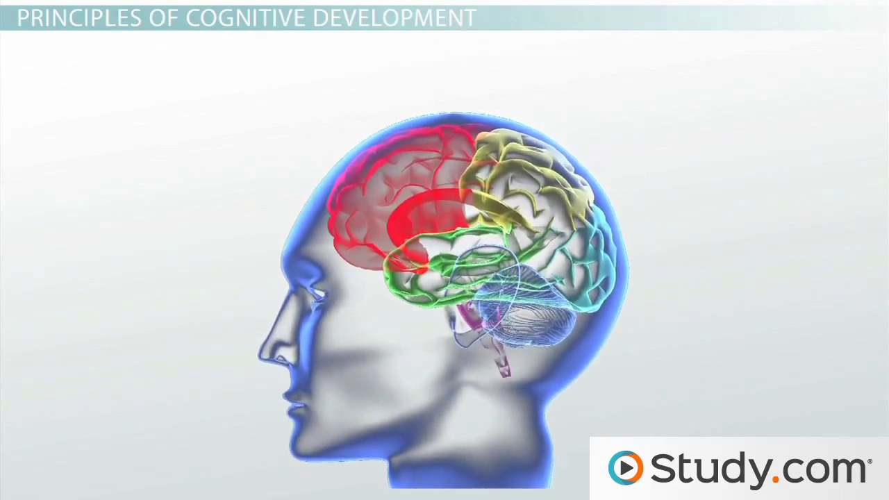 developmental psychology in children and adolescents videos child and adolescent development developmental milestones nature vs nurture