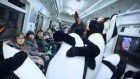 Penguins in the Metro