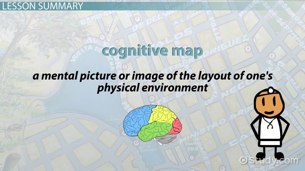 cognitive map definition and examples video lesson transcript