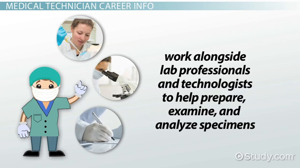 how to become a medical technician: career roadmap, Sphenoid
