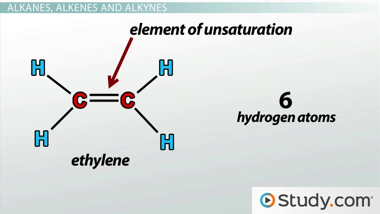 Functional Groups in Organic Molecules Video Lesson Transcript – Organic Molecules Worksheet
