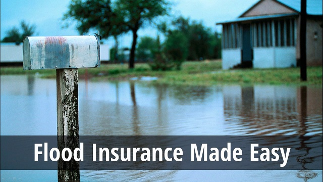 Flood Insurance Quotes Simple Flood Insurance Tampa  Brier Grieves Insurance