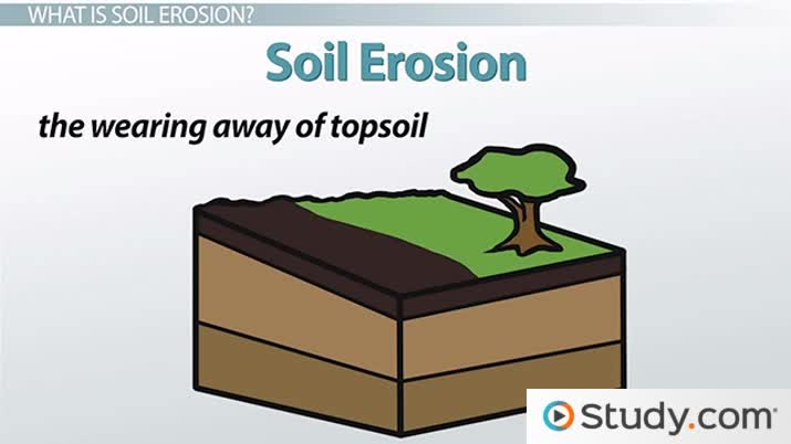 What is Soil Erosion? - Definition and Causes - Video & Lesson ...