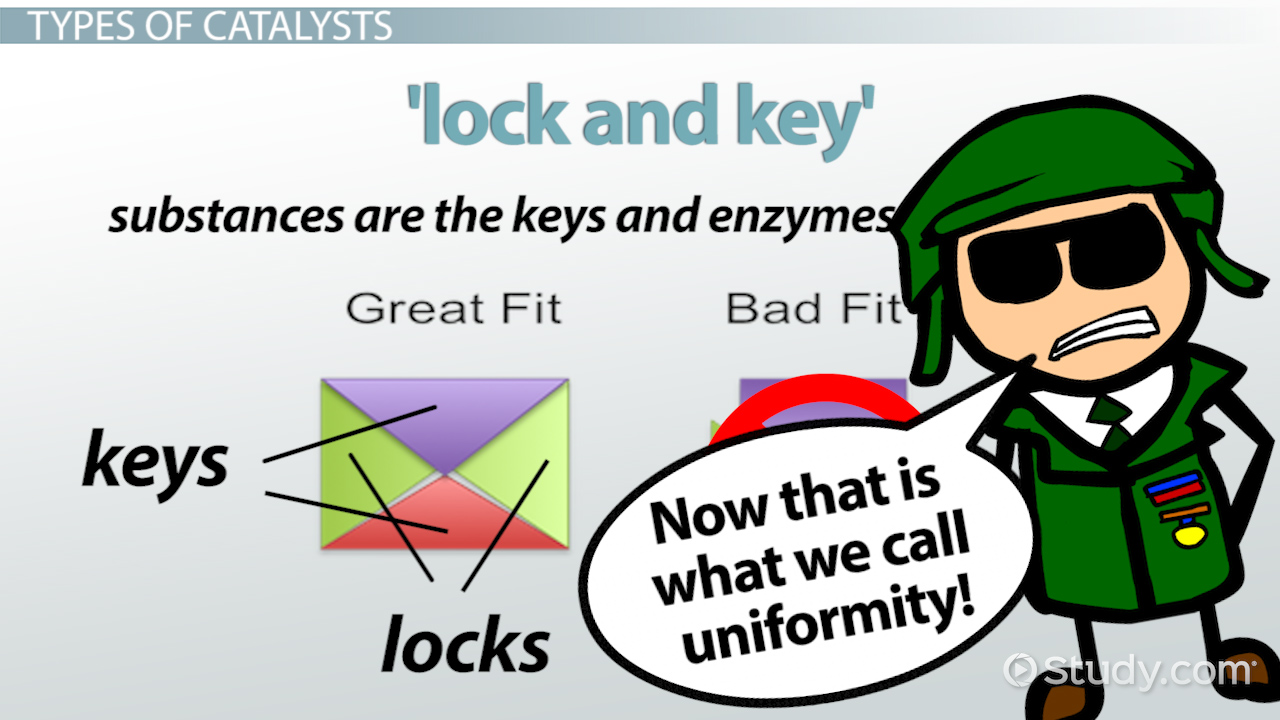 Catalysts: Definition, Types & Examples - Video & Lesson ...