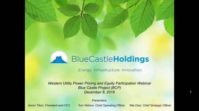 utilitypowerpricing - Blue Castle 2016