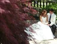 Vestidos de noiva Mon Cheri 2013 por David Tutera