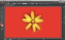 Como aplicar uma imagem com fundo transparente no Illustrator