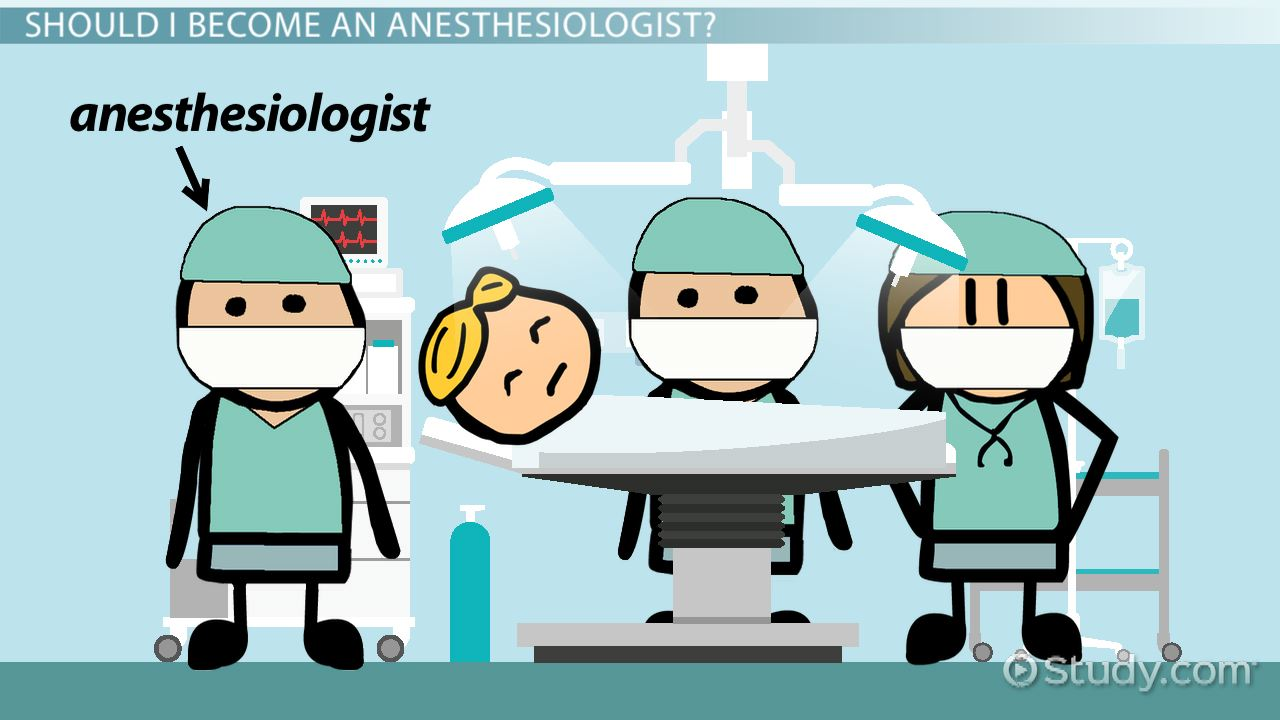 how to become an anesthesiologist: education and career roadmap, Human Body