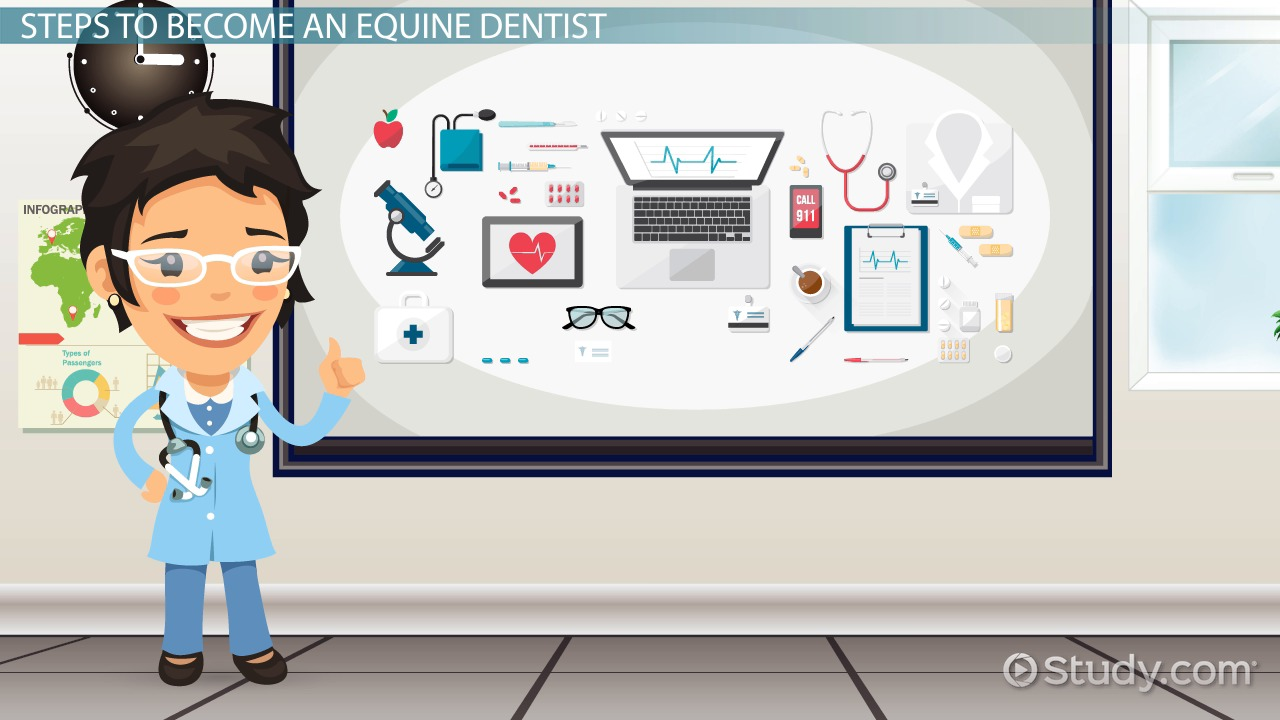 bank heists how to become an equine dentist