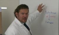 Male Estrogen - Robert Seik, PharmD