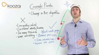 Google Panda in 2012