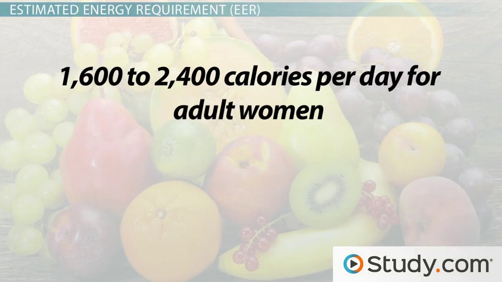 calories: definition, purpose & total count - video & lesson, Human Body