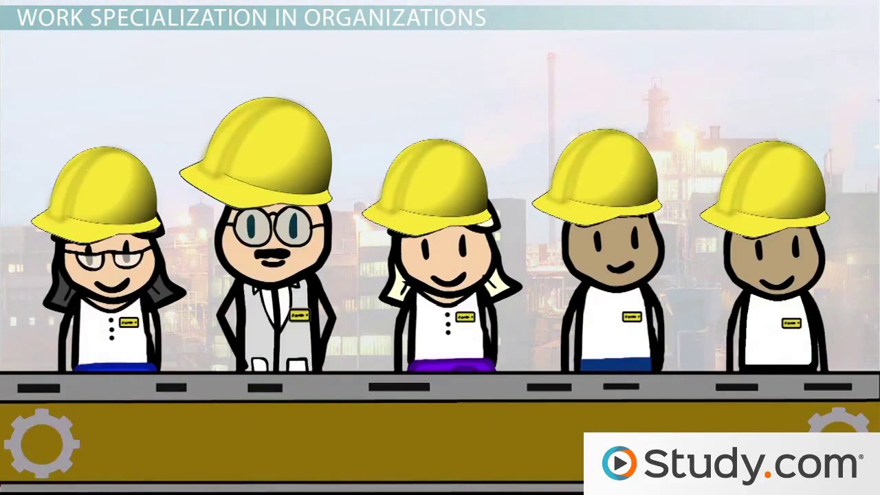 work specialization in organizations video u0026 lesson transcript