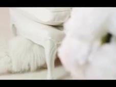 Pronovias voor de klassieke bruid – Sfeer proeven [Video]