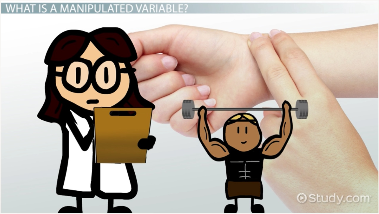What is a manipulated variable?