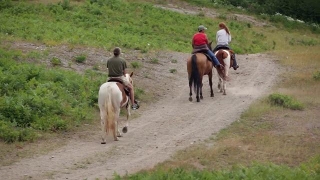 Horseback Riding Portland Or | Mt Hood Adventure Park at Skibowl
