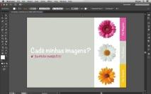 Minhas imagens sumiram do documento Illustrator