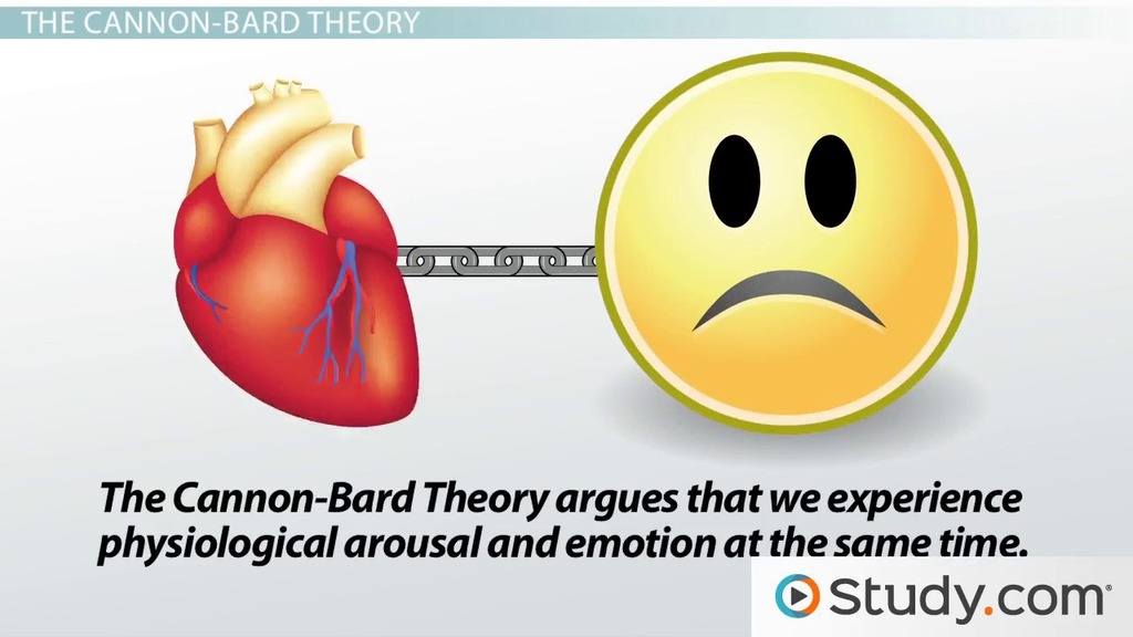 examine how one theory of emotion Running title: what is emotion  i shall examine emotion from this point of view, one axis at a time  theory (p 14),.
