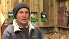 Townhead Farm Lambing
