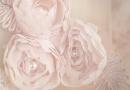Los vestidos de novia 2013 de Anaiss