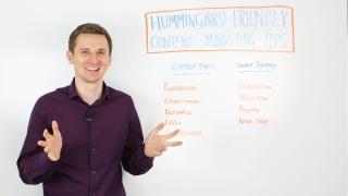 Hummingbird Friendly Content Marketing Tips