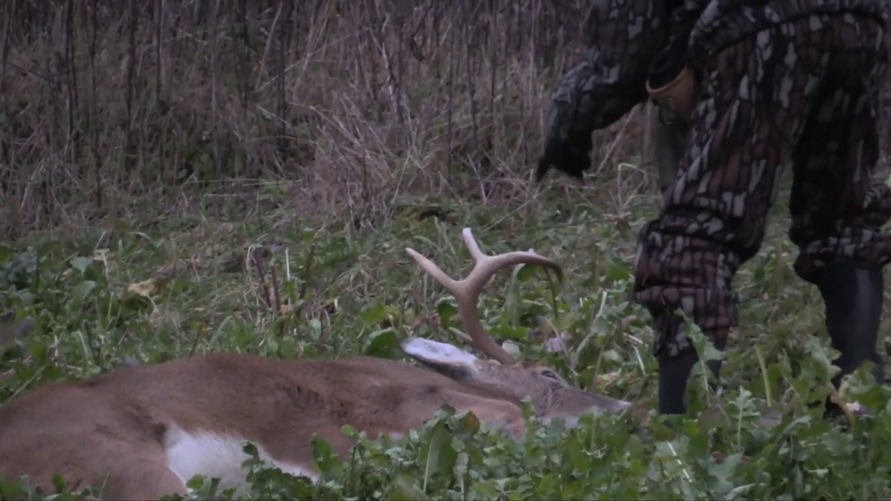 Whitetails By Design TV - Episode 14 - Hunting Late Season Un-pressured Food Plots