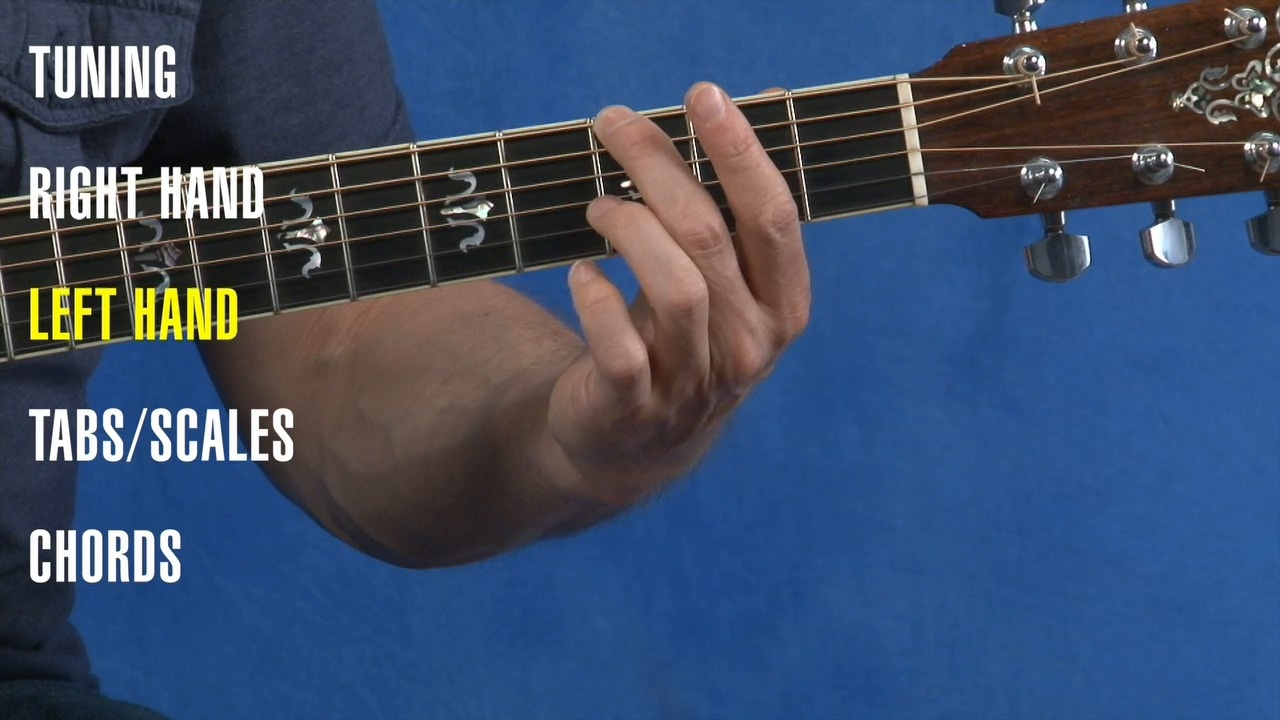 Free Beginner Guitar Lessons | Basic Step by Step Lessons